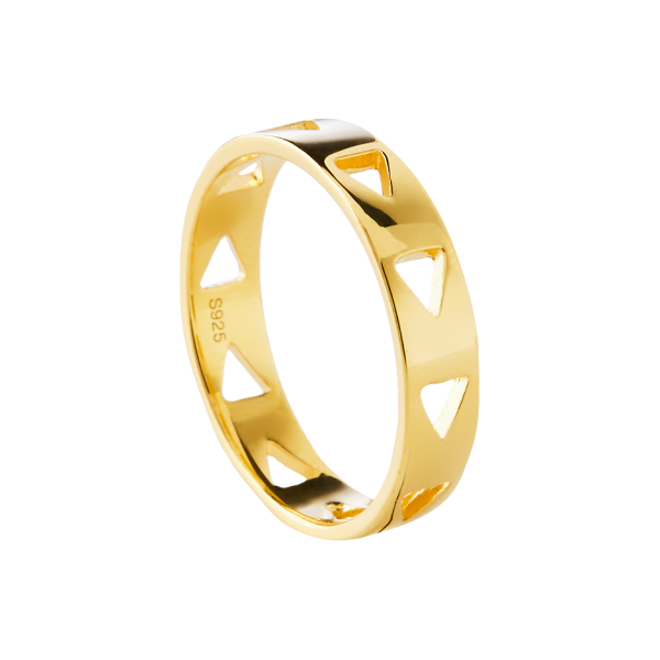 Anillo oro Follow