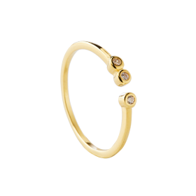 Coco gold ring